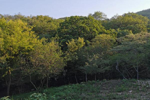 Foto de terreno habitacional en venta en san pedro 1000, san pedro, santiago, nuevo león, 0 No. 06