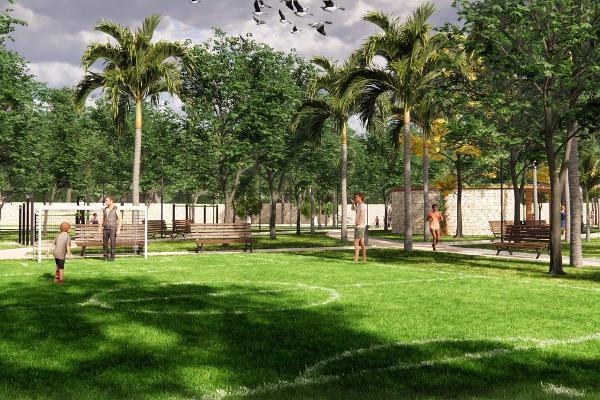 Foto de terreno habitacional en venta en  , san pedro cholul, mérida, yucatán, 0 No. 06
