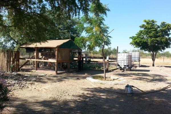 Foto de casa en venta en  , san pedro, hermosillo, sonora, 7954103 No. 12