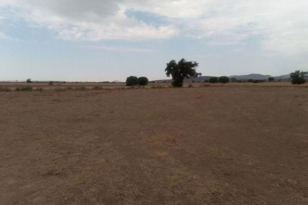 Foto de terreno comercial en venta en  , san pedro huaquilpan, zapotlán de juárez, hidalgo, 7300520 No. 04