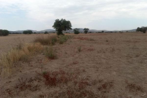 Foto de terreno comercial en venta en  , san pedro huaquilpan, zapotlán de juárez, hidalgo, 7300520 No. 05
