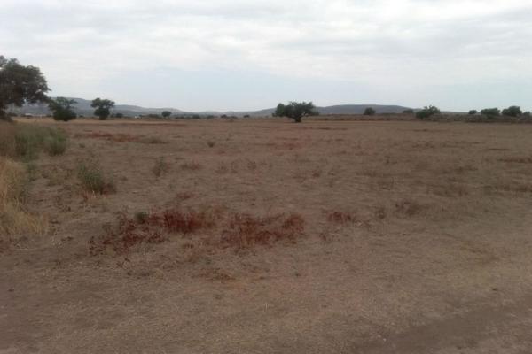 Foto de terreno comercial en venta en  , san pedro huaquilpan, zapotlán de juárez, hidalgo, 7300520 No. 08