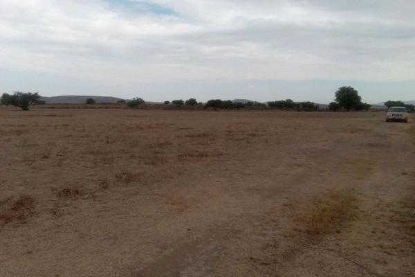 Foto de terreno comercial en venta en  , san pedro huaquilpan, zapotlán de juárez, hidalgo, 7300520 No. 12
