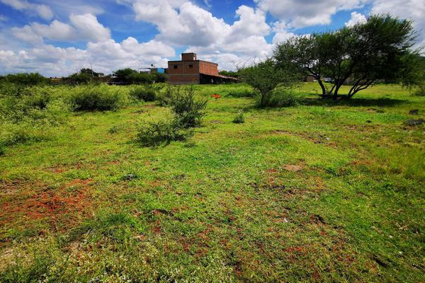 Foto de terreno habitacional en venta en  , san pedro, venustiano carranza, michoacán de ocampo, 19971328 No. 06