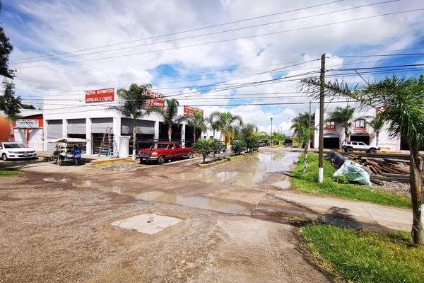 Foto de terreno habitacional en venta en  , san pedro, venustiano carranza, michoacán de ocampo, 19971328 No. 15