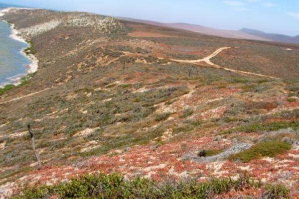 Foto de terreno habitacional en venta en  , san quintín, ensenada, baja california, 2721684 No. 06