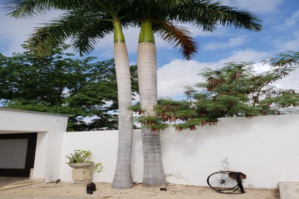 Foto de casa en venta en  , san ramon norte, mérida, yucatán, 18464216 No. 05