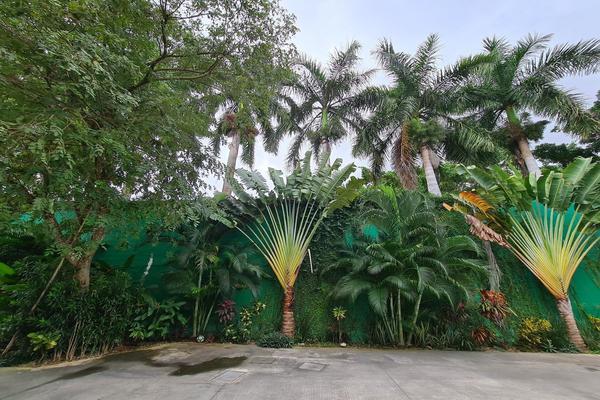 Foto de casa en venta en  , san ramon norte, mérida, yucatán, 18766088 No. 19