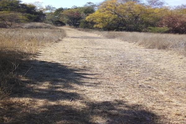 Foto de terreno habitacional en venta en  , san roque, juárez, nuevo león, 0 No. 09