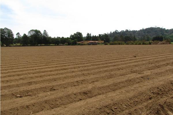 Foto de terreno habitacional en venta en  , san simón el alto, valle de bravo, méxico, 5410248 No. 03