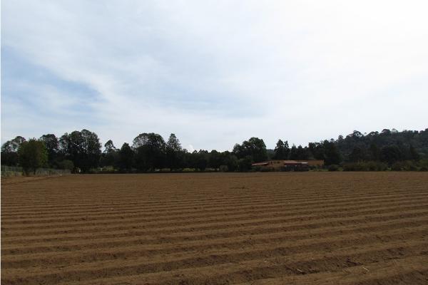 Foto de terreno habitacional en venta en  , san simón el alto, valle de bravo, méxico, 5410248 No. 08
