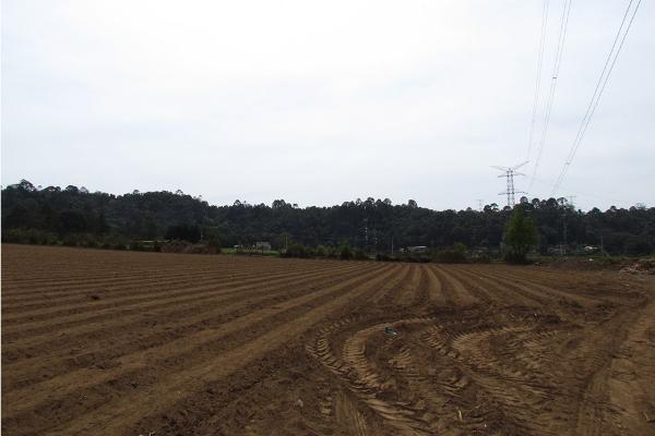 Foto de terreno habitacional en venta en  , san simón el alto, valle de bravo, méxico, 5410248 No. 09