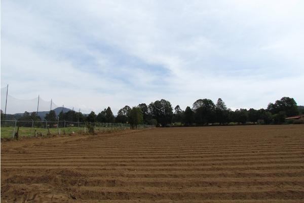 Foto de terreno habitacional en venta en  , san simón el alto, valle de bravo, méxico, 5410248 No. 14