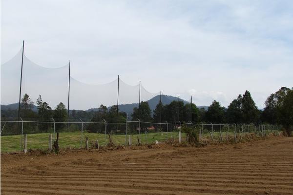 Foto de terreno habitacional en venta en  , san simón el alto, valle de bravo, méxico, 5410248 No. 15