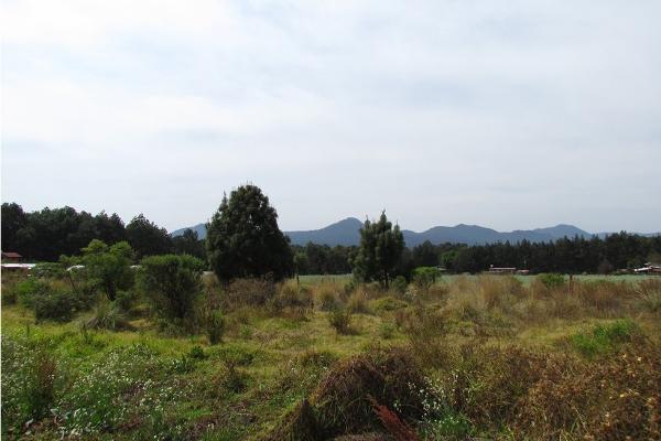 Foto de terreno habitacional en venta en  , san simón el alto, valle de bravo, méxico, 5859560 No. 10