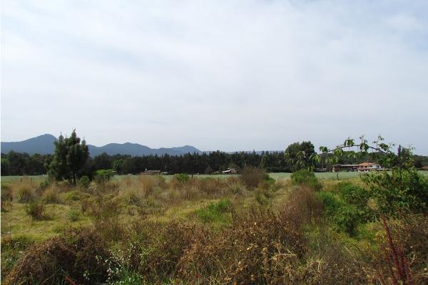 Foto de terreno habitacional en venta en  , san simón el alto, valle de bravo, méxico, 5859560 No. 11