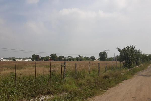Foto de terreno habitacional en renta en  , santa amalia, altamira, tamaulipas, 13223618 No. 03