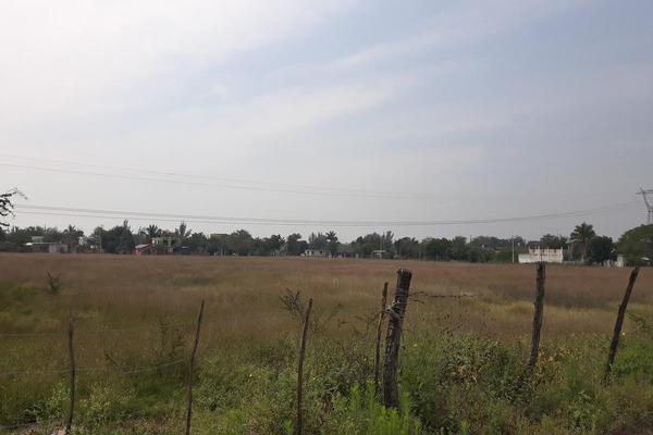 Foto de terreno habitacional en renta en  , santa amalia, altamira, tamaulipas, 13223618 No. 05