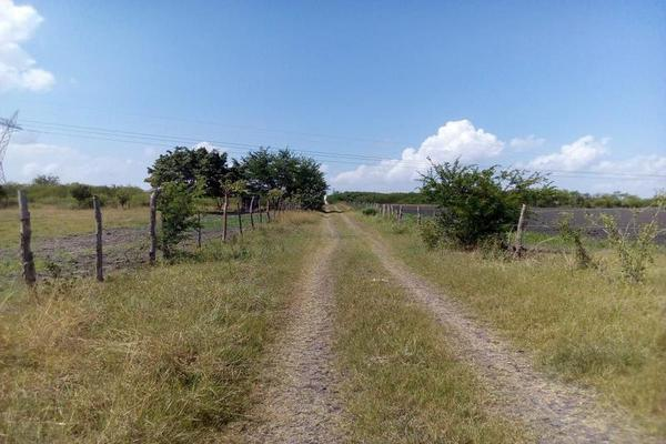 Foto de terreno habitacional en renta en  , santa amalia, altamira, tamaulipas, 18514980 No. 03