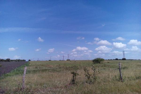 Foto de terreno habitacional en renta en  , santa amalia, altamira, tamaulipas, 18514980 No. 04