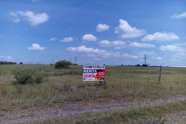 Foto de terreno habitacional en renta en  , santa amalia, altamira, tamaulipas, 0 No. 05