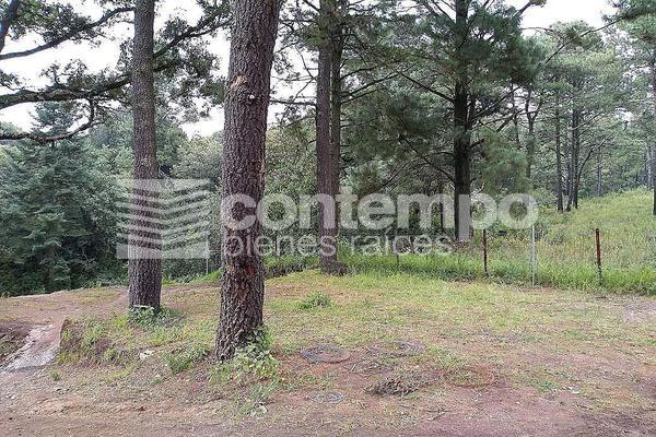 Foto de terreno habitacional en venta en  , santa ana jilotzingo, jilotzingo, méxico, 14024566 No. 04