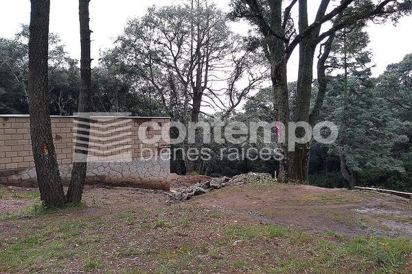 Foto de terreno habitacional en venta en  , santa ana jilotzingo, jilotzingo, méxico, 14024566 No. 05