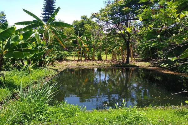 Foto de terreno habitacional en venta en  , santa anita, jiutepec, morelos, 7962458 No. 02