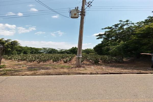 Foto de terreno habitacional en venta en santa barbara 3, san marcos, totolapan, morelos, 0 No. 04