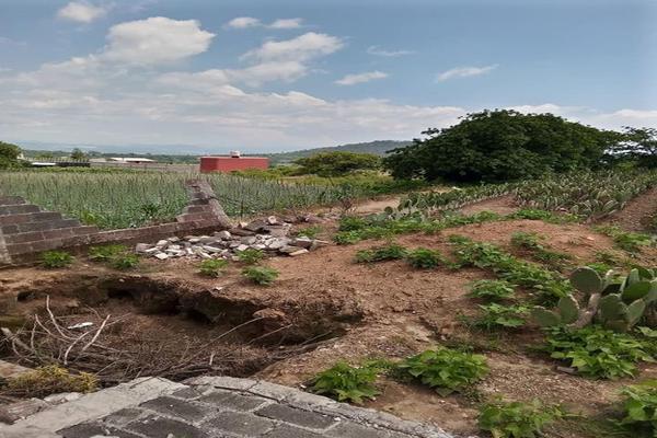 Foto de terreno habitacional en venta en santa barbara 3, san marcos, totolapan, morelos, 0 No. 10