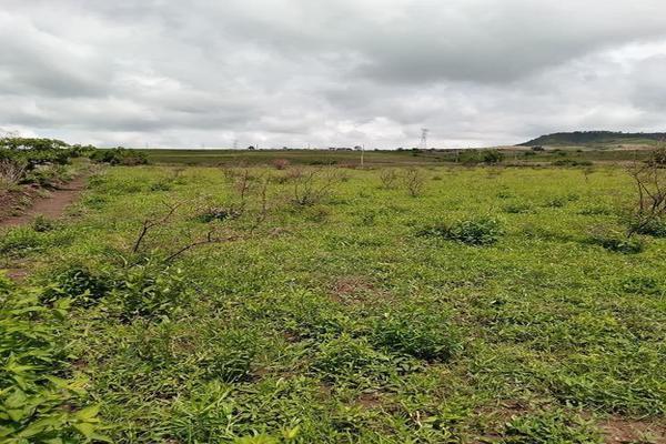 Foto de terreno habitacional en venta en santa barbara 4, san marcos, totolapan, morelos, 0 No. 04