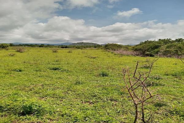 Foto de terreno habitacional en venta en santa barbara 4, san marcos, totolapan, morelos, 0 No. 07