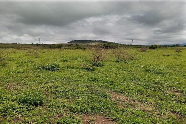 Foto de terreno habitacional en venta en santa barbara 4, san marcos, totolapan, morelos, 0 No. 08