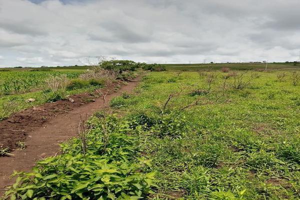 Foto de terreno habitacional en venta en santa barbara 4, san marcos, totolapan, morelos, 0 No. 09