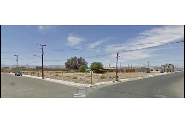 Foto de terreno habitacional en venta en  , santa cecilia, mexicali, baja california, 0 No. 02