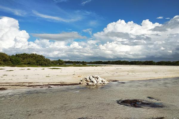 Foto de terreno habitacional en venta en  , santa clara, dzidzantún, yucatán, 0 No. 12