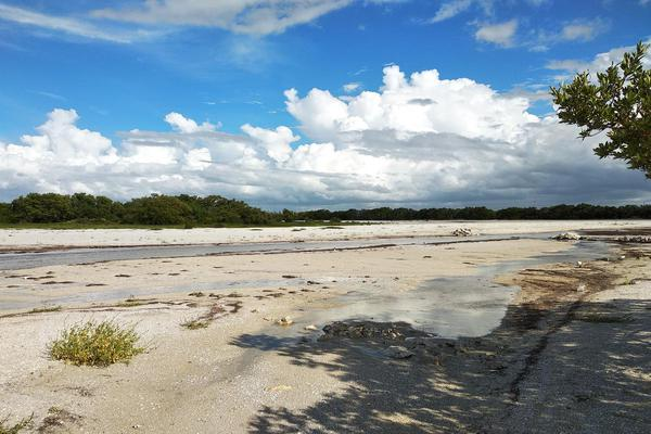 Foto de terreno habitacional en venta en  , santa clara, dzidzantún, yucatán, 0 No. 18