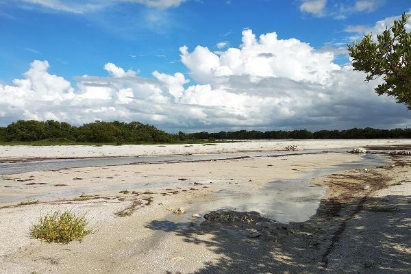 Foto de terreno habitacional en venta en  , santa clara, dzidzantún, yucatán, 13352229 No. 18