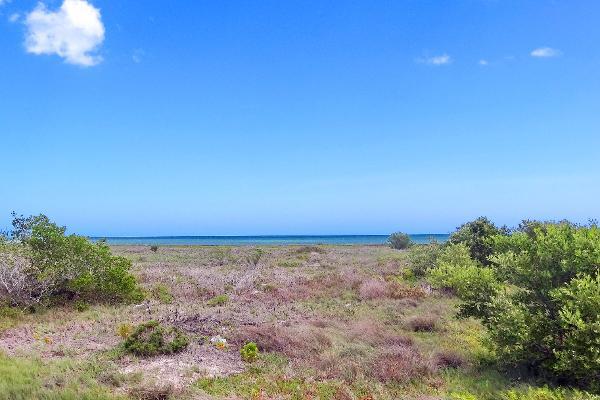 Foto de terreno comercial en venta en  , santa clara, dzidzantún, yucatán, 3089868 No. 01