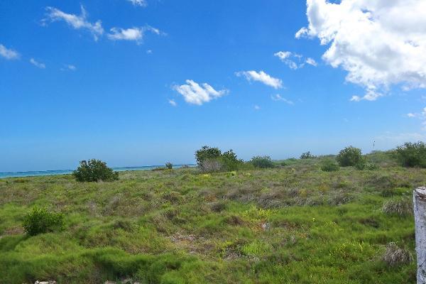 Foto de terreno comercial en venta en  , santa clara, dzidzantún, yucatán, 3089868 No. 02