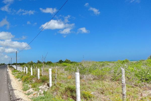 Foto de terreno comercial en venta en  , santa clara, dzidzantún, yucatán, 3089868 No. 03