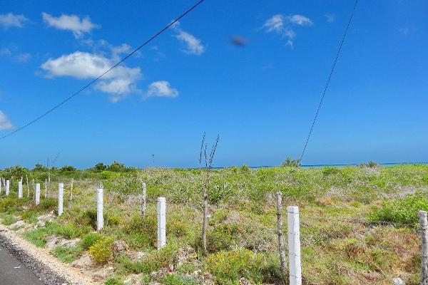 Foto de terreno comercial en venta en  , santa clara, dzidzantún, yucatán, 3089868 No. 04