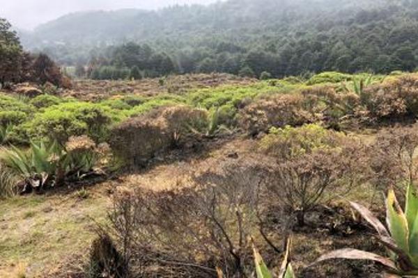 Foto de terreno habitacional en venta en  , santa cruz ayotuxco, huixquilucan, méxico, 5377441 No. 01