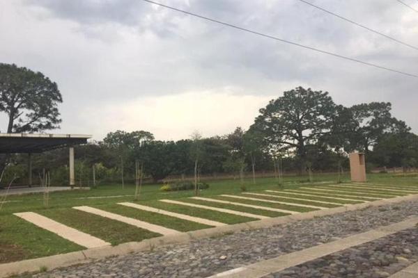 Foto de terreno habitacional en venta en  , santa cruz del astillero, el arenal, jalisco, 7925566 No. 07
