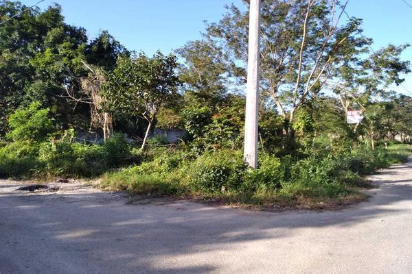 Foto de terreno habitacional en venta en  , santa cruz, tizimín, yucatán, 19948576 No. 03