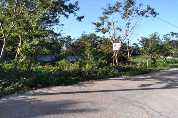 Foto de terreno habitacional en venta en  , santa cruz, tizimín, yucatán, 19948576 No. 04