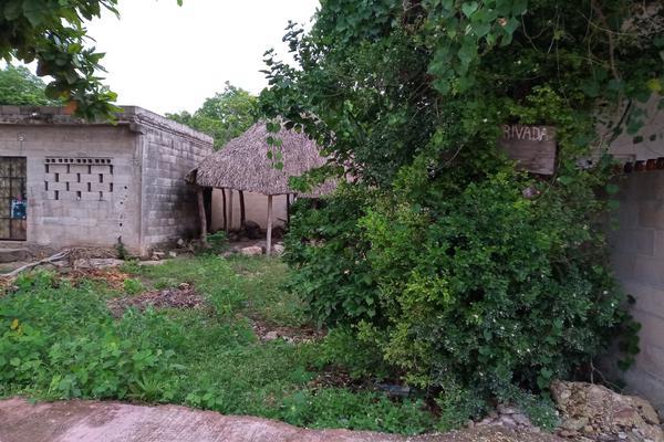 Foto de terreno habitacional en venta en  , santa cruz, tizimín, yucatán, 0 No. 02