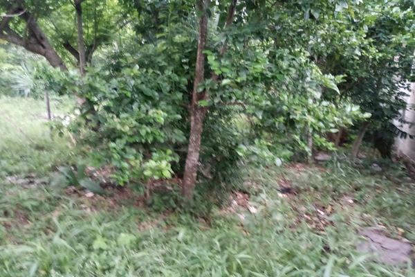 Foto de terreno habitacional en venta en  , santa cruz, tizimín, yucatán, 0 No. 03