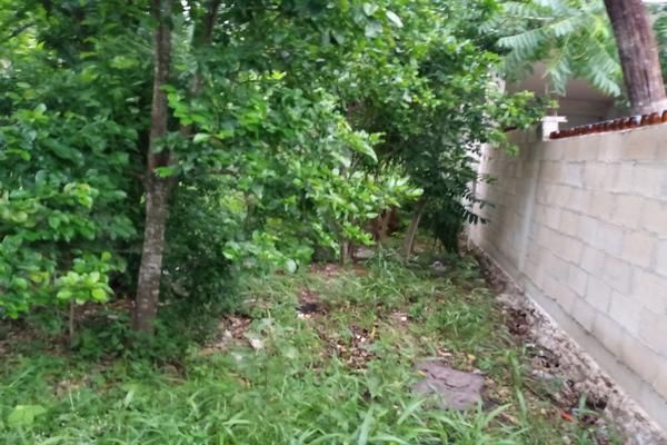 Foto de terreno habitacional en venta en  , santa cruz, tizimín, yucatán, 0 No. 05