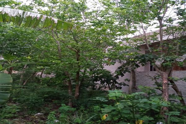 Foto de terreno habitacional en venta en  , santa cruz, tizimín, yucatán, 0 No. 10